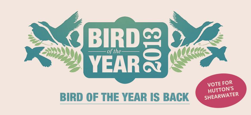 2013-bird-of-year